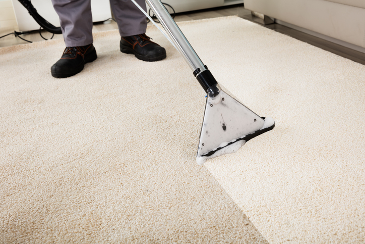 House and Carpet Cleaning